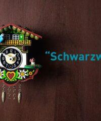 Schwarzwald – Frexit Live Escape Room Freiburg
